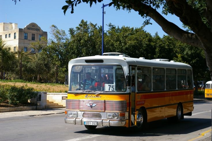 Maltese Service Bus DBY302