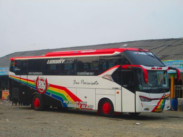 Tour Bus Rainbow Livery