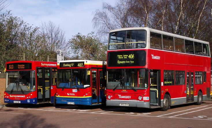 Three bus line up