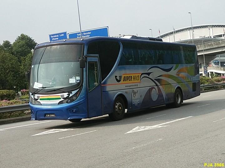 Super Nice-PJA3966