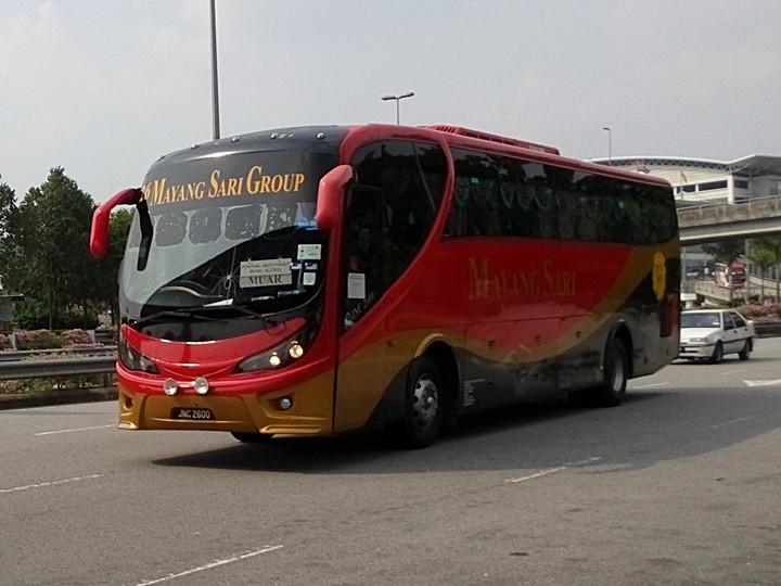 Mayang Sari-JNC2600