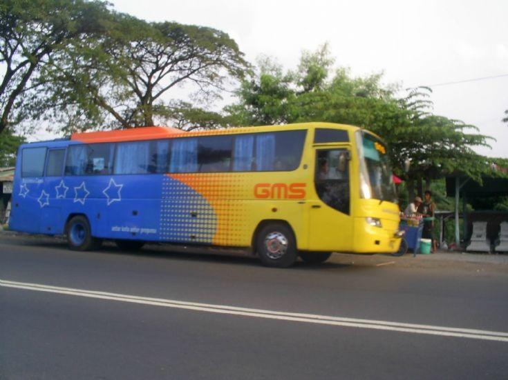 GMS bus